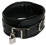 BNB1 - Black Padded Collar